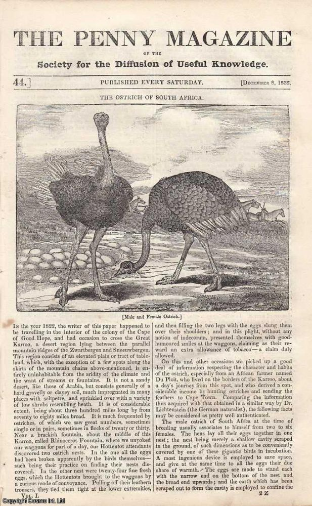 The Ostrich of South Africa; On Ancient India; Mount Versuvius; Carisbrook Castle; On Motion, etc. Issue No. 44, December 8th, 1832. A complete rare weekly issue of the Penny Magazine, 1832.