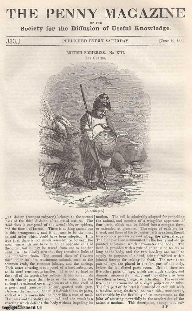 British Fisheries: The Shrimp; The Forest of Dean, concluded; The St. Lawrence and Quebec; Savages in France; Adventures in Egypt and Syria, concluded. Issue No. 333, June 10th, 1837. A complete rare weekly issue of the Penny Magazine, 1837.